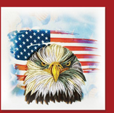eagle and America flag